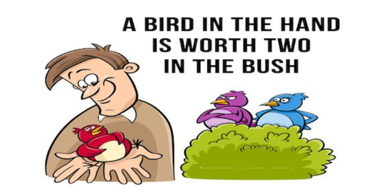 معنی فارسی اصطلاح: A bird in the hand is worth two in the bush